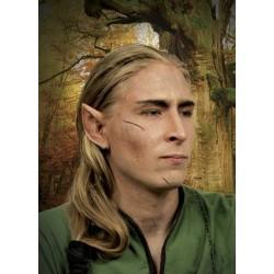 Grandi orecchie da elfo