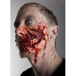 Joue déchiquetée zombie